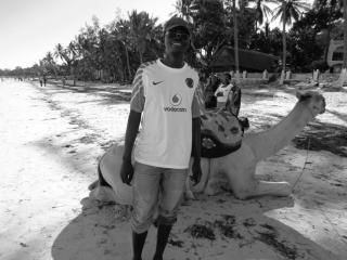 gmbara's picture